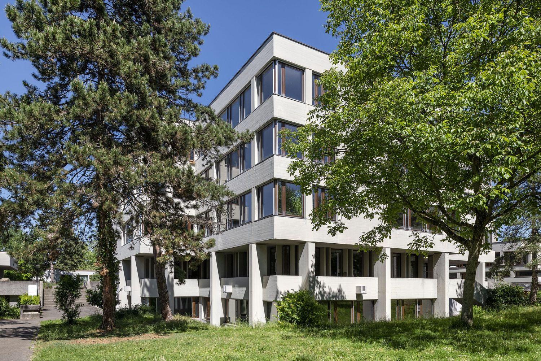 Fenster Sekundarschule Rheinpark Bild vom Garten