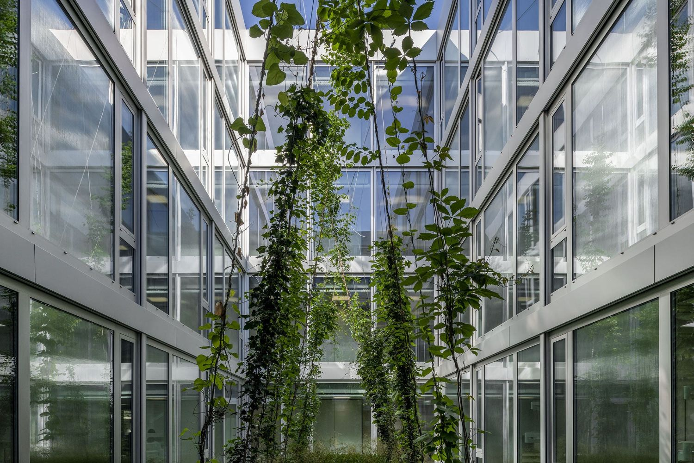 Innenhof, UZB Basel